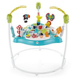 Fisher-Price Color Climbers Jumperoo, Activity Jumper for Ba