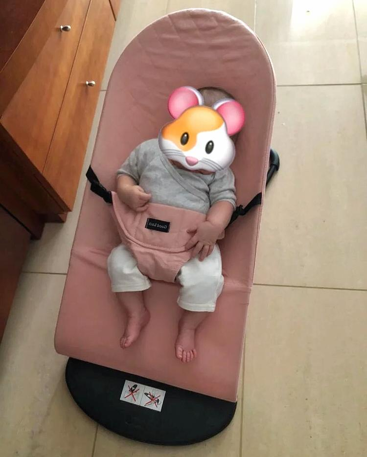 Babyjon Bouncer Grey Pink Beige Red With Extra Mesh Baby Bou