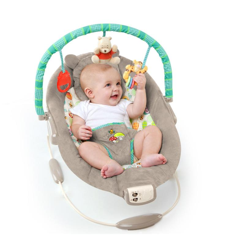 Disney Baby Pooh Bouncer and
