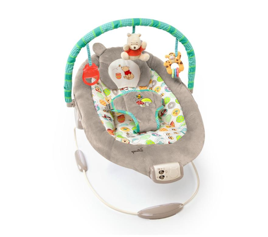 disney baby winnie the pooh bouncer seat