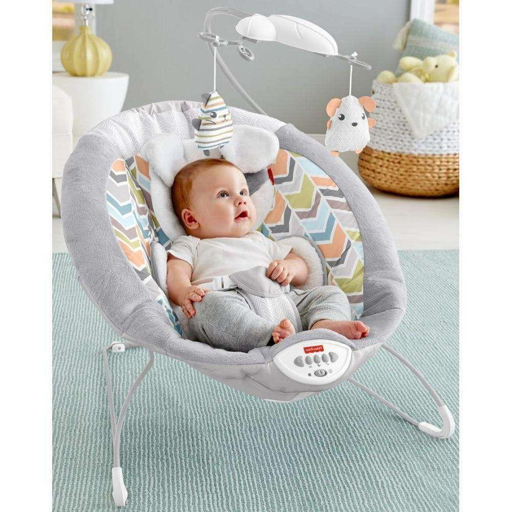 Fisher- Snugapuppy Deluxe Bouncer White DTH04 887961354348