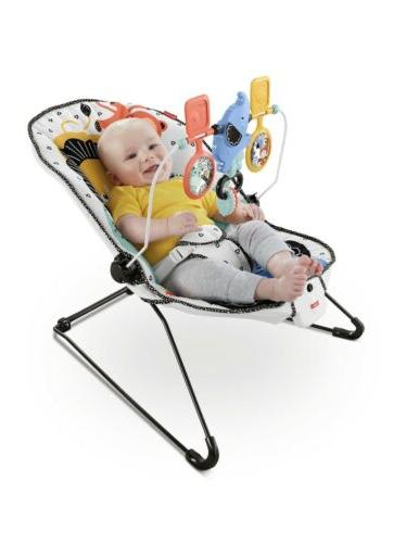 fisher price deluxe bouncer signature style