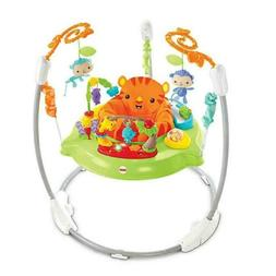 Fisher-Price Rainforest Jumperoo, 1 ea